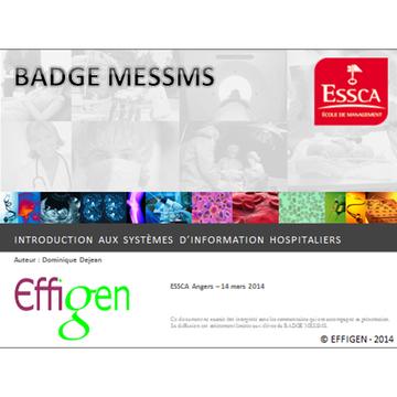 miniature EFFIGEN - ESSCA 2015